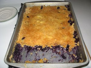 Blueberry Crunch Cake