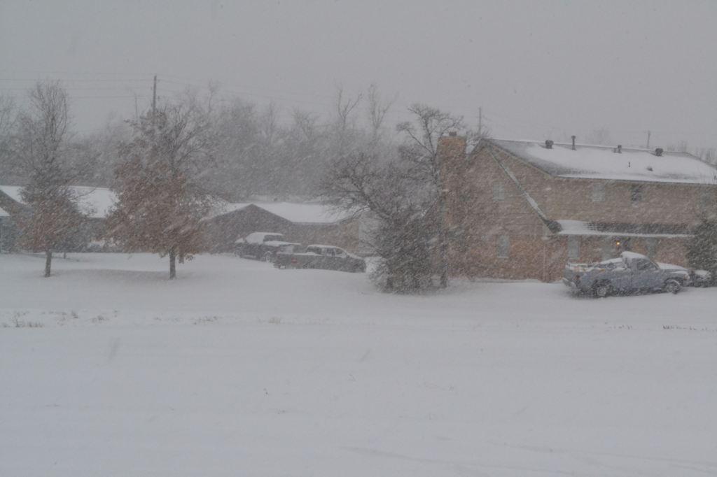 Sunday-snow